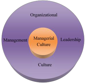 Fig. 2. Managerial culture, an integral component of organizational culture